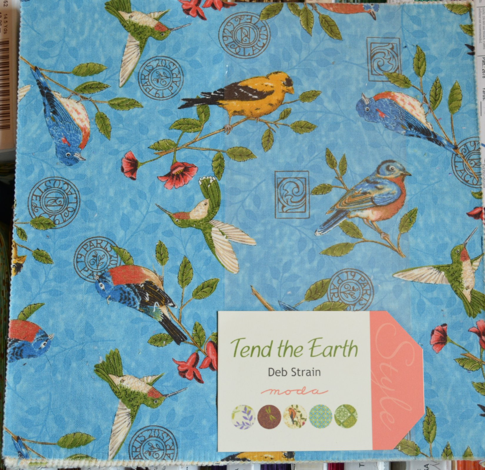 Tend the Earth, 10 Squares, Birds