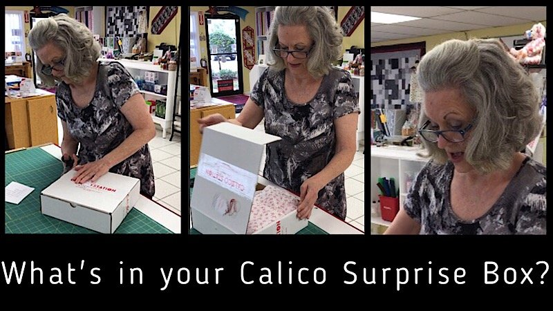 Calico Surprise Box