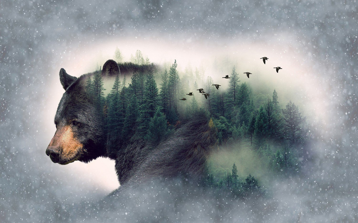 Call of the Wild - Forest Bear Panel 27 x 44