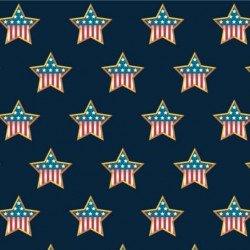 Minky In Memory Of - Flag Stars on Navy