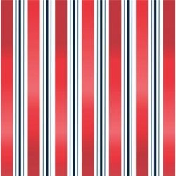Minky Liberal Stripes