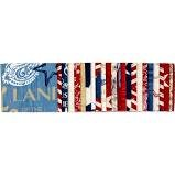 Colors of Freedom 21/2 inch strips Wilmington Fabrics