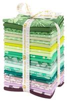 Terrarium FQ Bundle Cool Colorstory