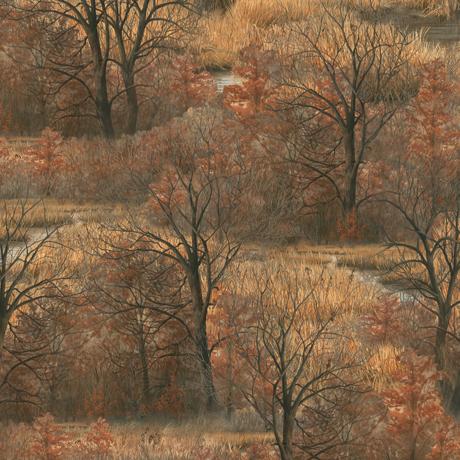 Wild Pheasants Woods