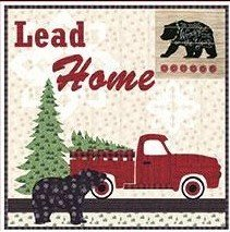 Lead Home Banner Kit 31x31
