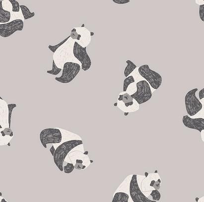1682-Fog New Here, Panda (21C)