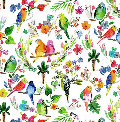 1775- Multi Parrots (21C)