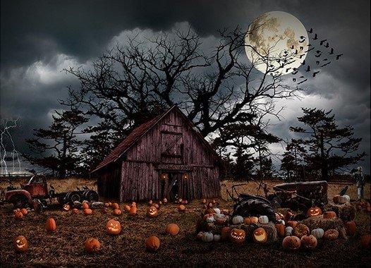 24857-307 Haunted Halloween Panel