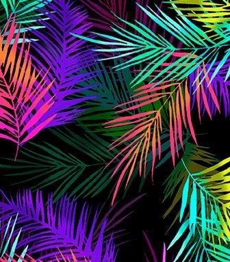 9723-99 Island Palm (20I)