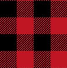 Red/Black Soft Woven Buffalo Plaid