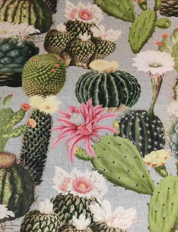 91.207-01 Cactus Canvas (21B)