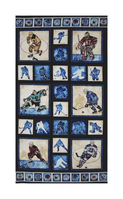 Hockey Panel