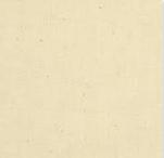 114/292cm  Unbleached Muslin (21A)
