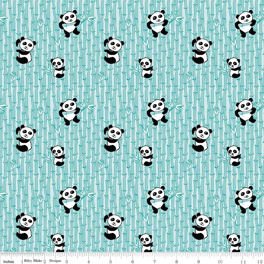 Panda C-8042 AQUA
