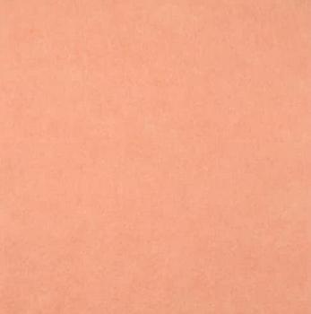 Wool Felt - Peach - 8.5x12