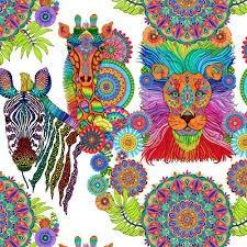 Safari, So Goodie 24 panel