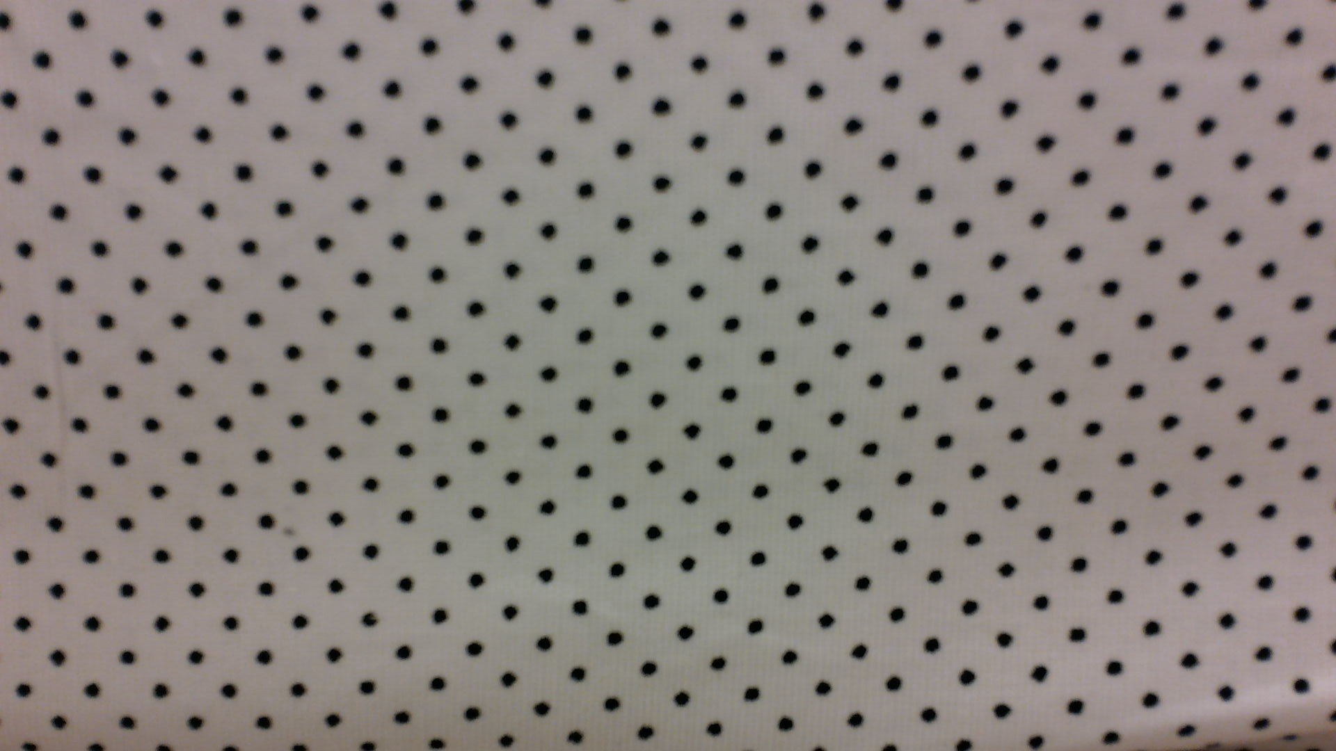 Corduroy #4 -  White with Black Dots