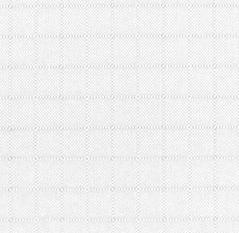 Ripstop Nylon- White (21A)