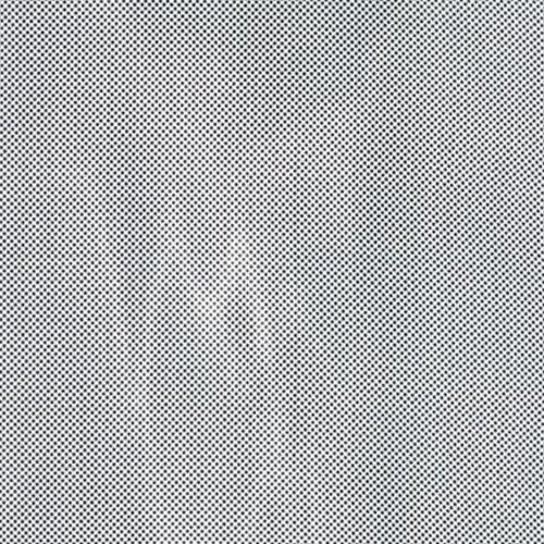 Moda Thicket Dottie Tiny Dots White Jet Black 45010 17