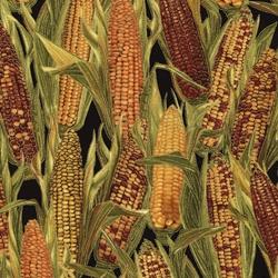 Timless Treasures Harvest Corn CM3216
