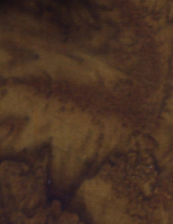 Anthology LAVA SOLIDS 100Q-1728 WALNUT