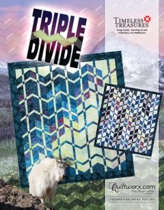 Quiltworx Judy Niemeyer Triple Divide