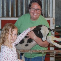Meet the sheep-petting lambs