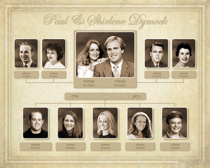 Family Tree Example Gallery