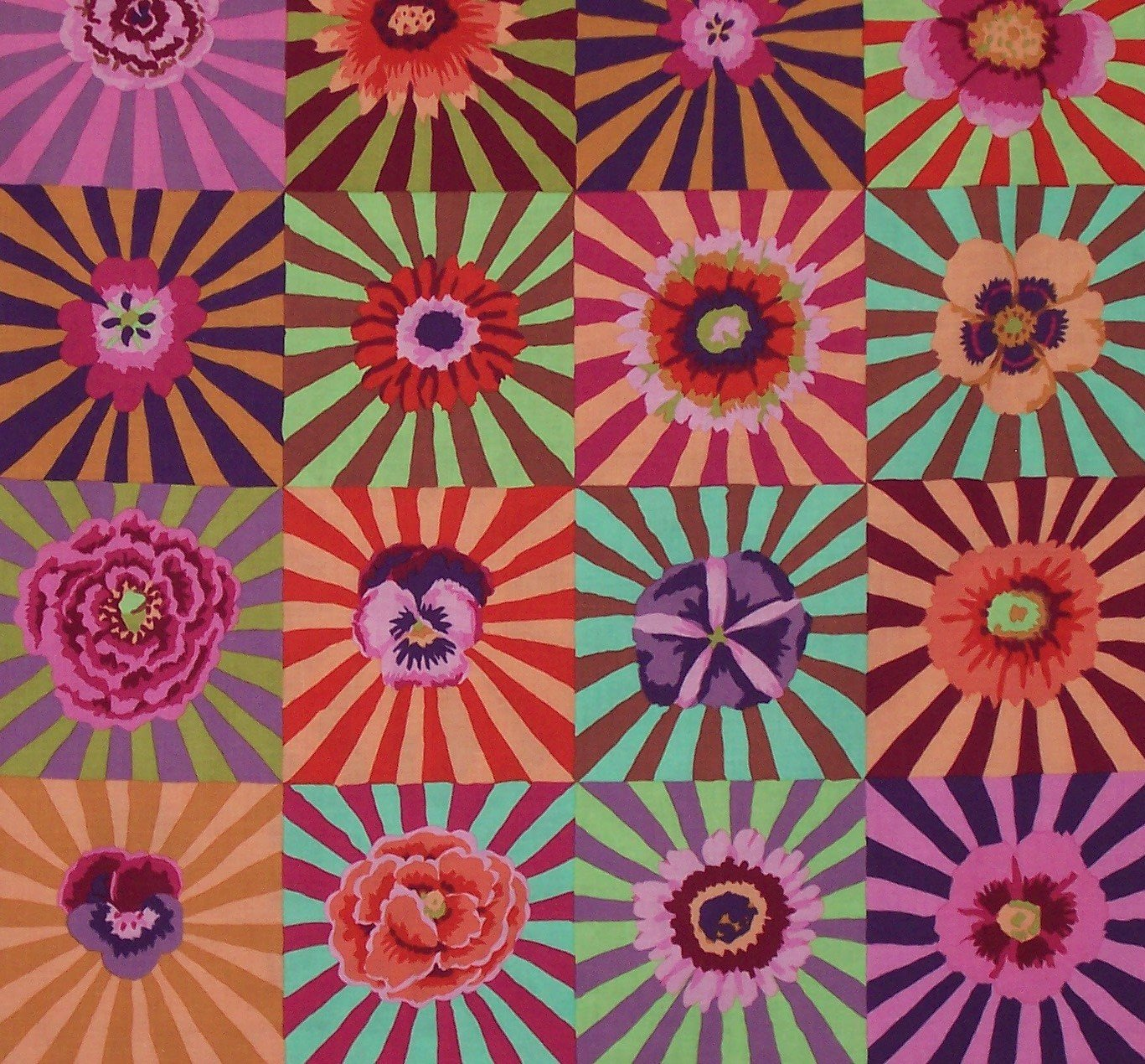 Kaffe Fassett Collective...Sunburst