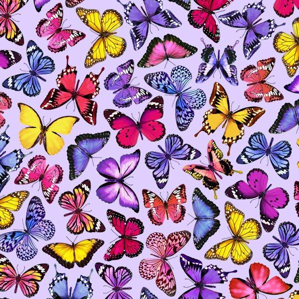Spring Beauty...Butterflies