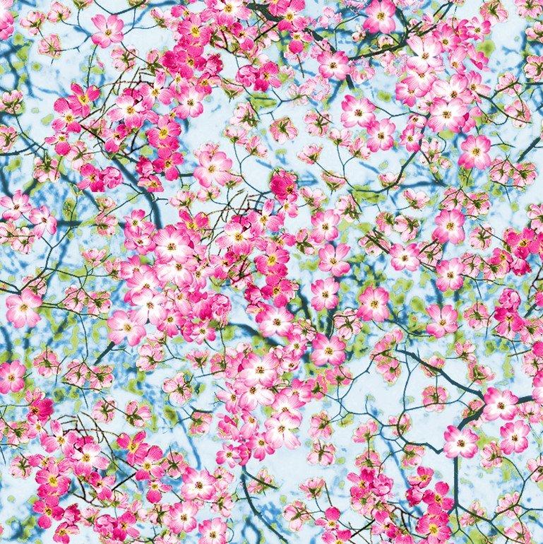 Nature...Flowery Sky