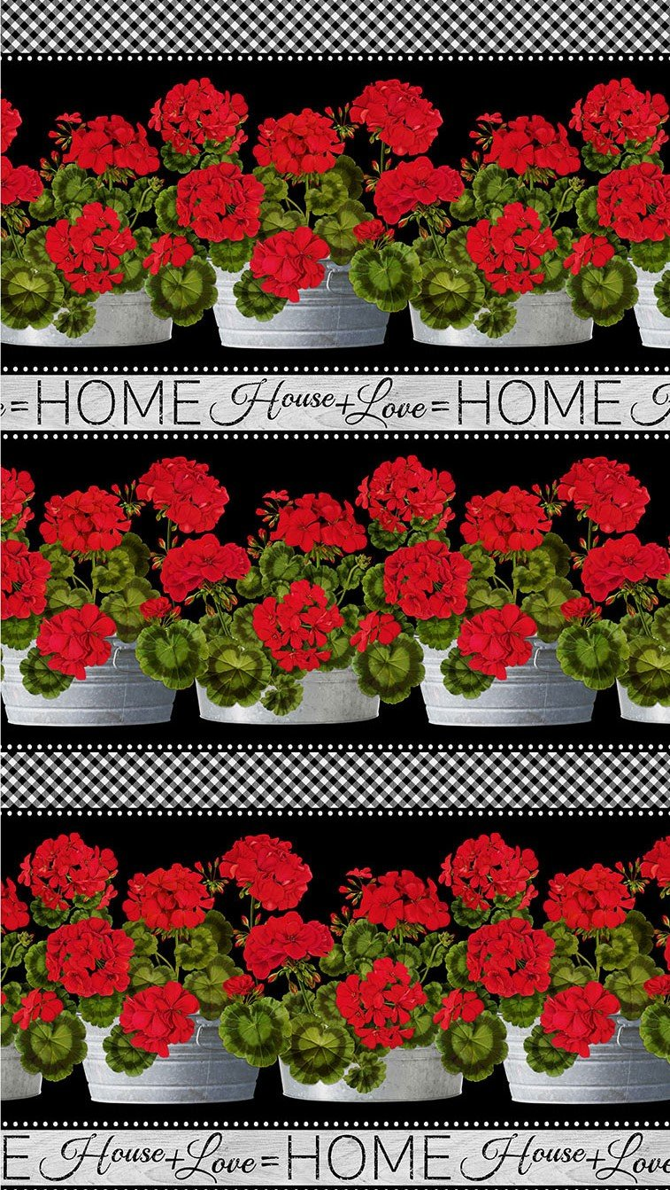 Geraniums - Border Stripe
