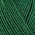 ultra wool worsted 3335 holly