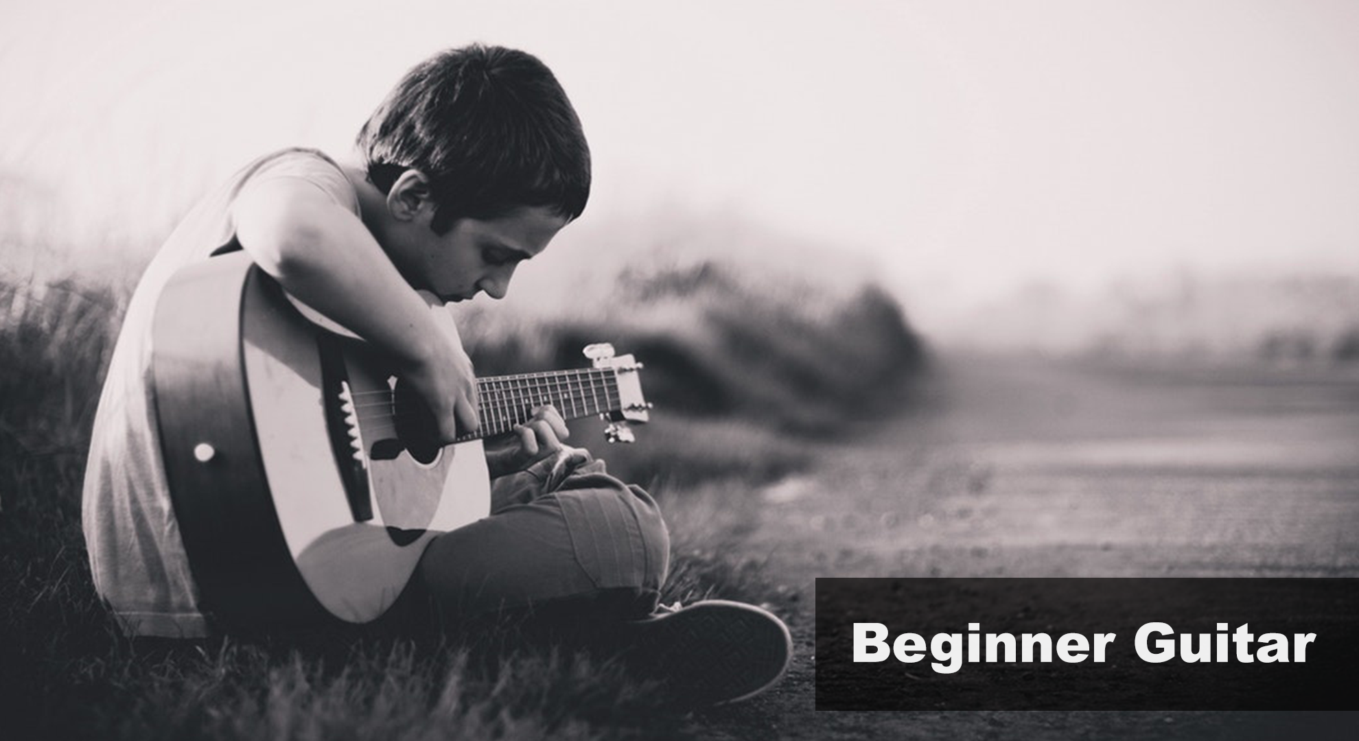 Providing Musical Instruments, Lessons, Repair Services and