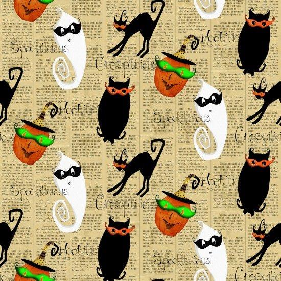 Cheeky Wee Pumpkins