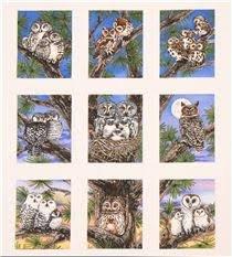 *10* 416 4325 Owl Families RPP