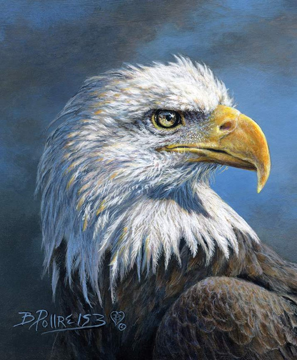 *10* 320 P9283 Wild & Beautiful Eagle Panel FPP