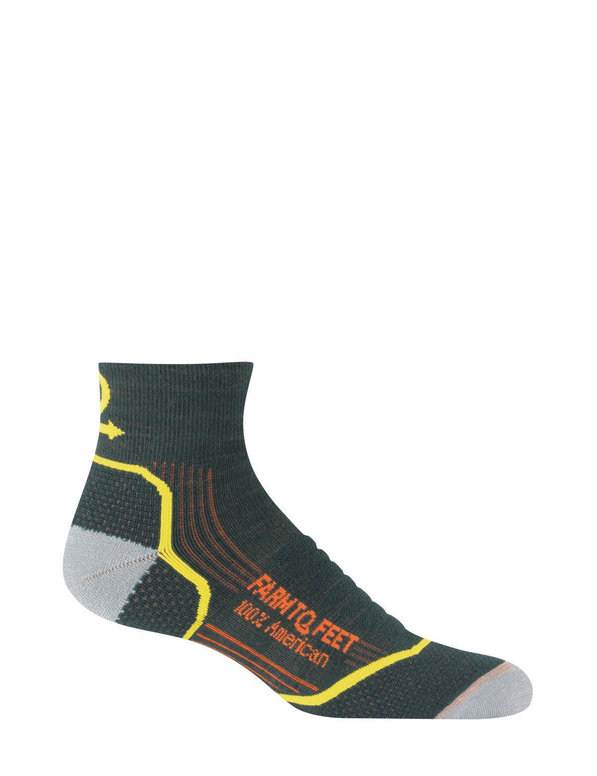 Farm To Feet Damascus Lightweight Technical 1/4 Crew Men's socks