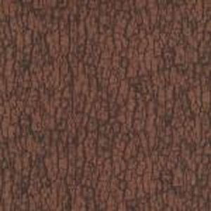 You Bug Me Dark Brown Bark Print