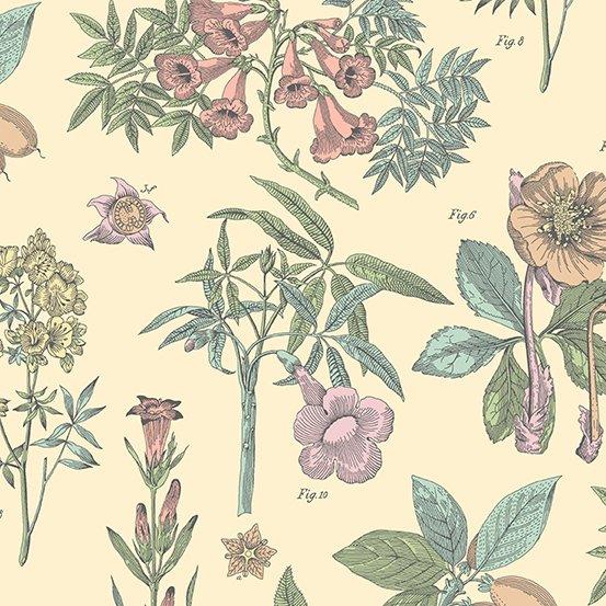 Andover Fabrics - Botanica 2020 - 9258 E