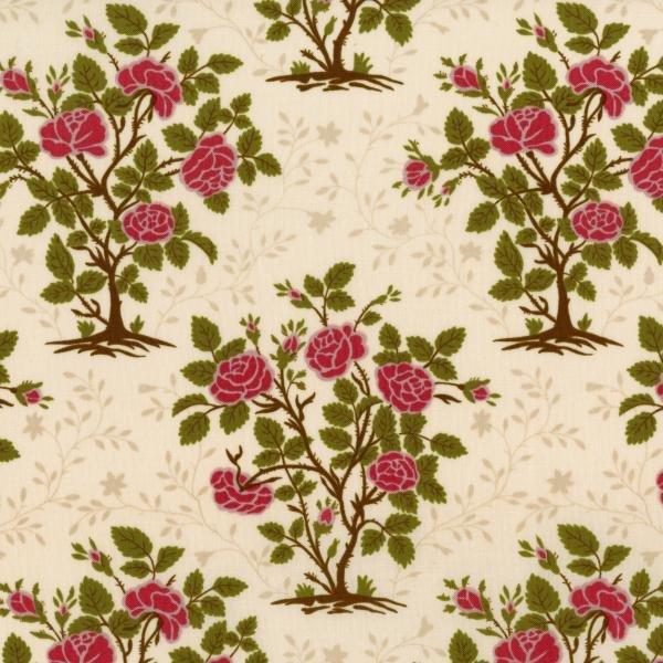 RJR Fabrics  - Garden Gate - Robyn Pandolph