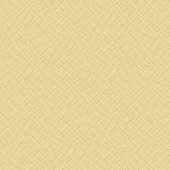 Andover Fabrics - 2020 Trinkets A 9004 N1