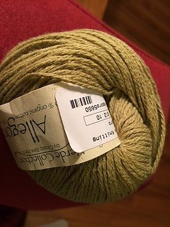 Allegoro Yarn by Classic Elite Color Cerignola 5650