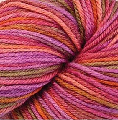 Cascade 220 Superwash Paints Yarn color 9791