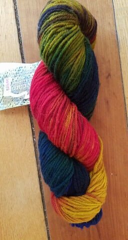 Riverwash Worsted Yarn Colorway Bitterroot Rainbow by Mountain Colors