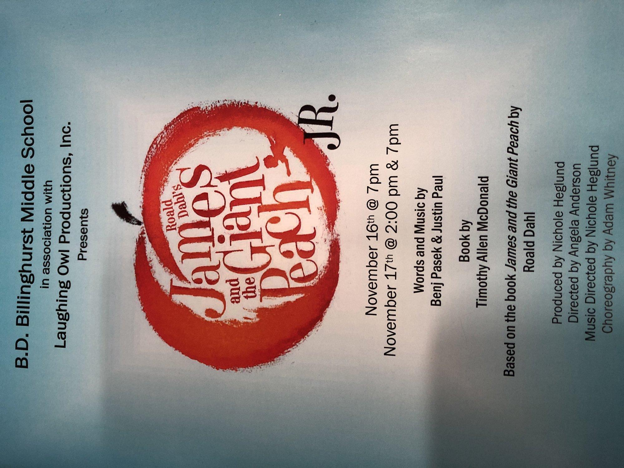 Billinghurst School Musical DVD - 2pm performance