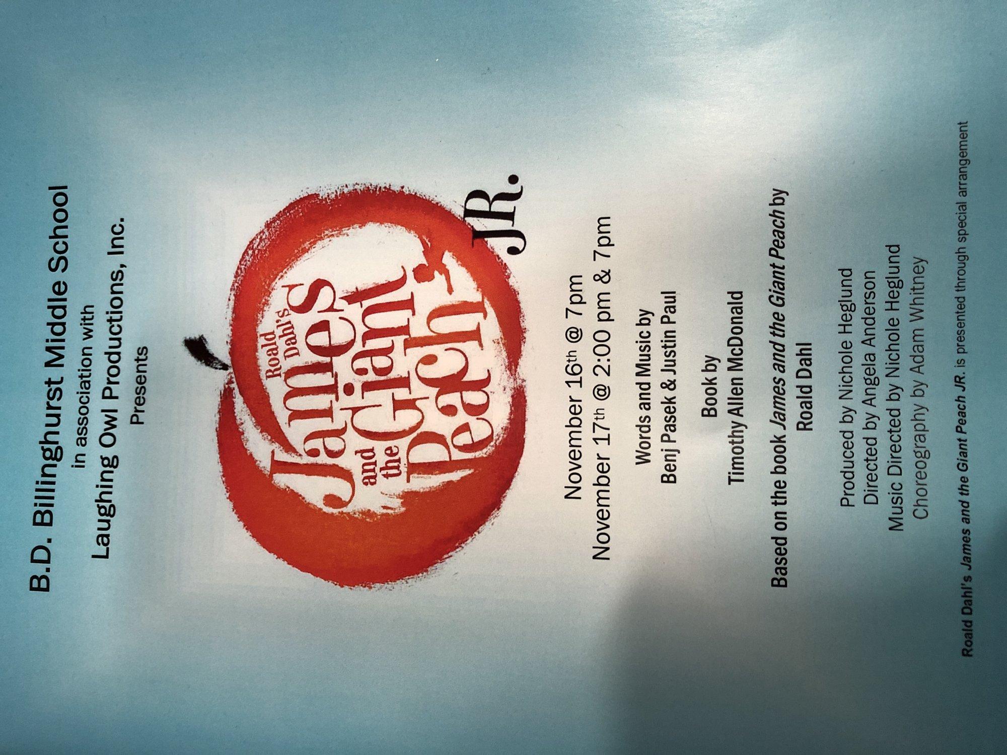 Billinghurst School Musical DVD - 7pm performance