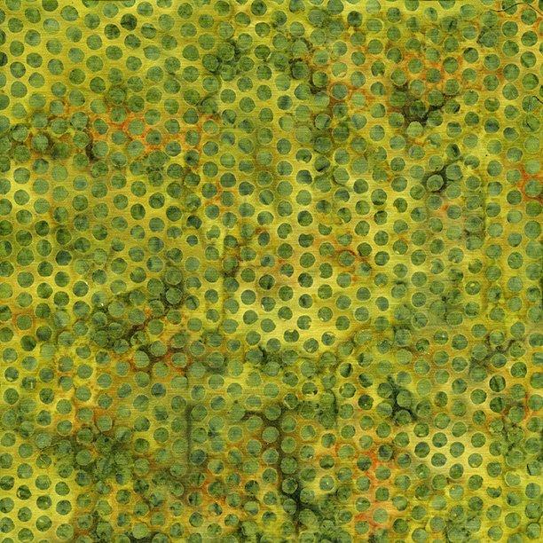 Dot-Cactus  121704645