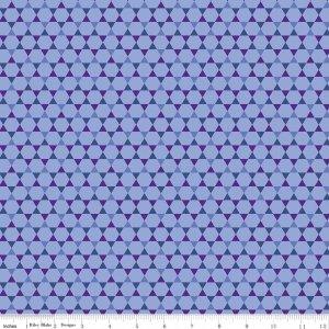 ROSES HEXI BLUE-C6272