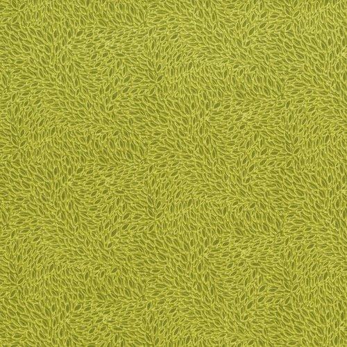 Hopscotch - Avocado - 3221-005